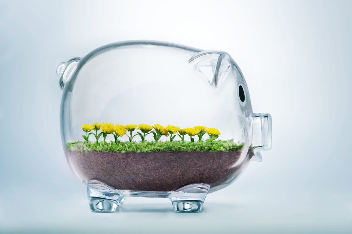 Glass piggy bank with small layer of dirt, grass and sunflowers growing inside. Used as a metaphor for client growth using Inpensa's SaaS for Capital Planning.
